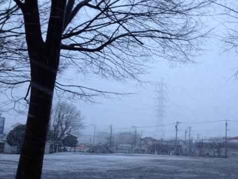 雪が舞う立春