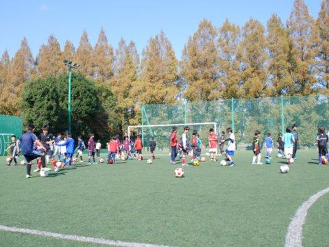 スポーツを通じた地域コミュニティ活性化に向けて