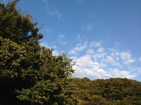 秋の空気に誘われて