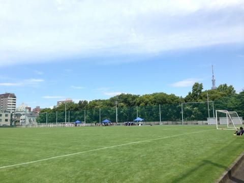 全てのサッカー場を天然芝に!