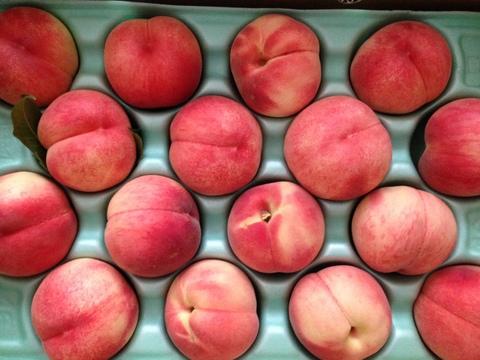 会津から桃がやって来た