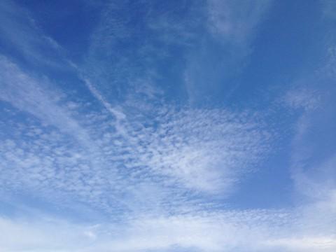 のんびり青空を眺めよう