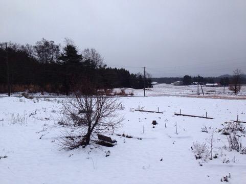冬の到来と節目