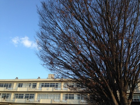 冬晴れの校舎