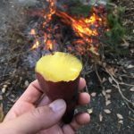 焼き芋は昭和の香りがする。