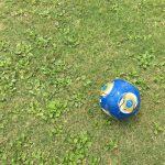 「学ぶ楽しみ」って「草サッカーで楽しむ」と同じだよ。