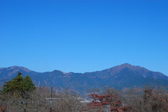 権現山から丹沢・大山を望む