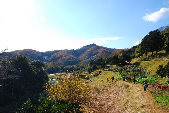 弘法山の麓にてミカン狩り