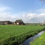 「みんなでよりよい教育を考える取り組み」inオランダ