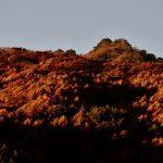 日が昇り信州の山々を照らす大日向にて