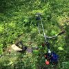 猛暑の中での草刈り