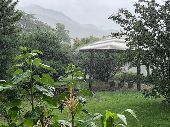 にわか雨が毎日のように降る