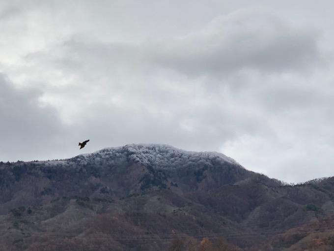 初冠雪した茂来山の麓で