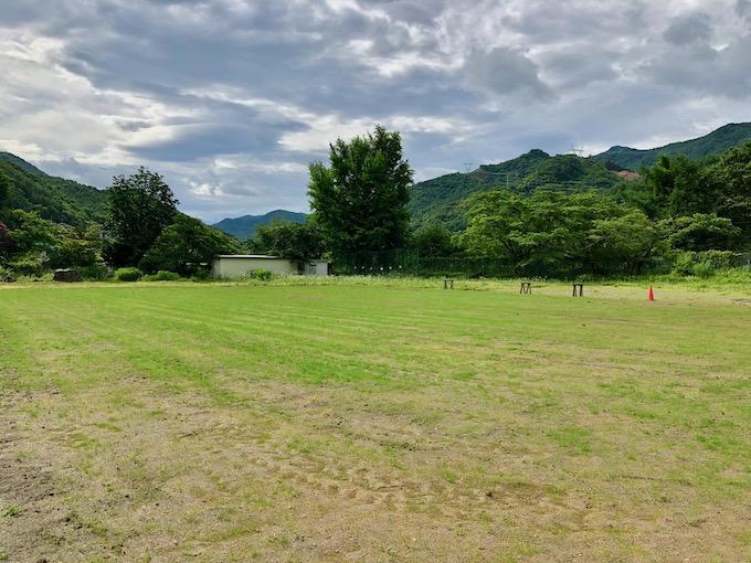 7月7日の芝生