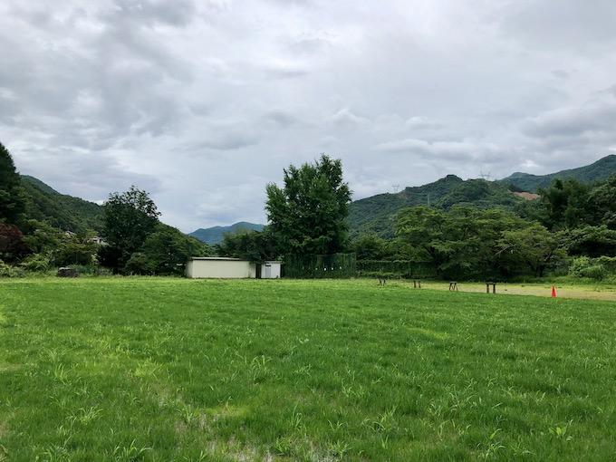7月30日最初の芝刈り前