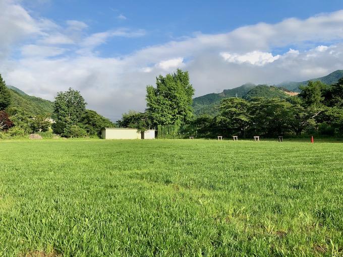 7月30日最初の芝刈り後