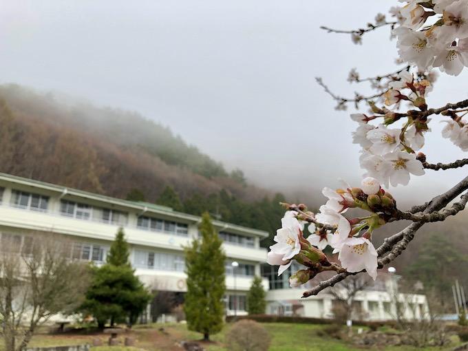 花冷えの大日向と桜
