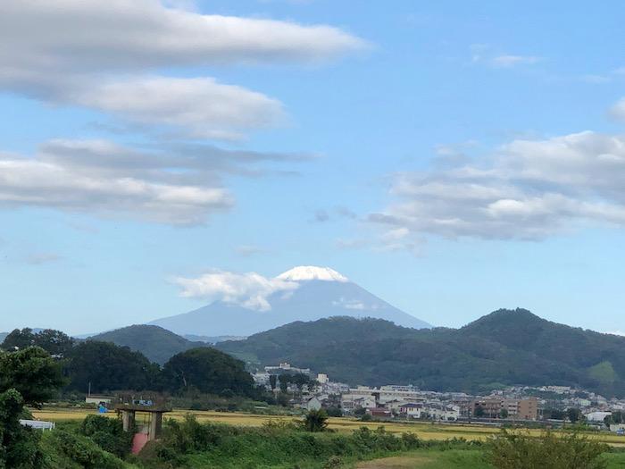 黄金色の田んぼと富士山頂の雪