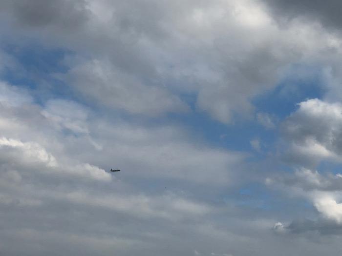 自由に大空を飛び回れるように